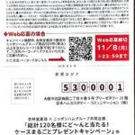 杏林堂 キャンペーン 懸賞